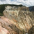 Beauty Of The Grand Canyon In Yellowstone by Living Color Photography Lorraine Lynch