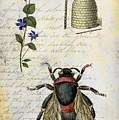 Bee Flower Hive  by Nada Meeks