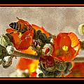 Bee On Red Flower 4 by Larry White