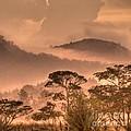 Before Sunset by Heiko Koehrer-Wagner