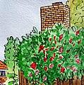 Behind The Fence Sketchbook Project Down My Street by Irina Sztukowski