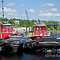 Belfast Tugboats by Susan Cole Kelly