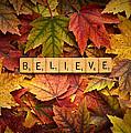 Believe-autumn by Onyonet  Photo Studios