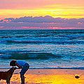 Bella At Sunrise by Alice Gipson