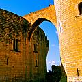 Bellver Castle Mallorca by Iris Vanessa Hood