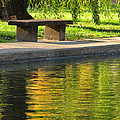 Bench And Reflections In Tower Grove Park by Greg Matchick