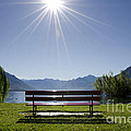 Bench On The Lakefront by Mats Silvan