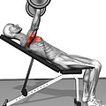 Bench Press Incline (part 1 Of 2) by MedicalRF.com