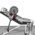 Bench Press Incline (part 2 Of 2) by MedicalRF.com