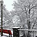 Bench With Snow by Mats Silvan