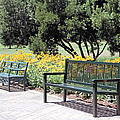 Benches  by Lee Hartsell