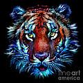 Bengal Tiger Portrait by Elinor Mavor