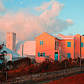 Bermuda Colors by Tom Singleton