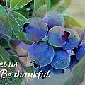 Berry Beautiful by Shirley Sirois