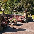 Best Benches by David  Hollingworth
