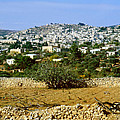 Bethlehem Birthplace Of Jesus by Daniel Blatt