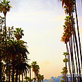 Beverly Hills In La by Susanne Van Hulst