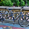 Bicycle Built For Two by Paul Ward