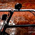 Bicycle by Dattaram Gawade
