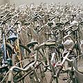 Cycle Park by Shaun Higson