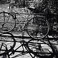 Bicycle Shadow 1 by Madeline Ellis