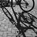 Bicycle Shadows In Black And White by Suzanne Gaff