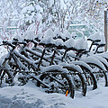 Bicycles In The Snow by Heidi Smith