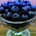 Big Bowl Of Blueberries by Barbara Griffin