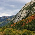 Big Cottonwood Canyon 2 by Bruce Bley