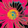 Big Pop Floral by Ricki Mountain