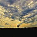 Big Sky by Debbie Portwood