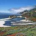 Big Sur by Renee Hardison