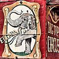 Big Top Elephants by Kristin Elmquist