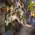 Bike - Ny - Greenwich Village - The Green District by Mike Savad