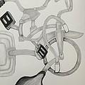 Bike Mania by Raul Martinez