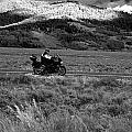 Bike Run Through Yellowstone by D L McDowell-Hiss