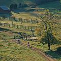 Bikers On Dirt Road, Pocahantas County by Skip Brown