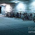 Bikes by Igor Kislev