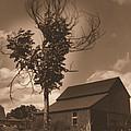 Bills' Barn by John Selmer Sr