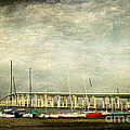 Biloxi Bay Bridge by Joan McCool