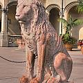 Biltmore Lion by Andrew Webb