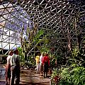 Bio Dome by Larry Mulvehill