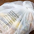 Biodegradable Plastic Bag by Sheila Terry