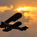 Biplane At Sunset by Bill Cannon