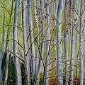 Birch Forest by Julie Brugh Riffey