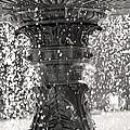 Bird Fountain Of Tears by Traci Cottingham