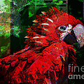 Bird Of Exotic Color by Christine Mayfield