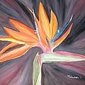 Bird Of Paradise by Wandeka Gayle