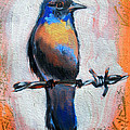 Bird On A Wire by Susi Franco