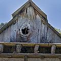 Birdhouse In Cambria by Mick Anderson